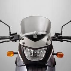Pantalla Sport VStream® Gris claro (26%) con Revestimiento de Quantum® para BMW F650GS/G650GS de National Cycle